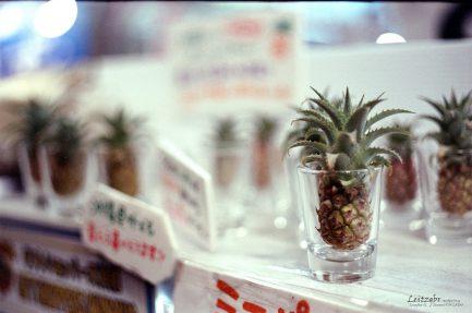 (庫存稀少不打折)Bokkeh 富士Fuji 500T 8547 電影底片 Eterna Vivid Tungsten 彩色電影負片 分裝片35mm