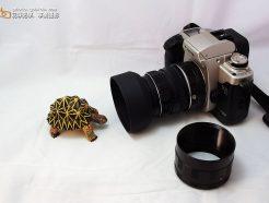 Canon EOS 微距接環 接寫環