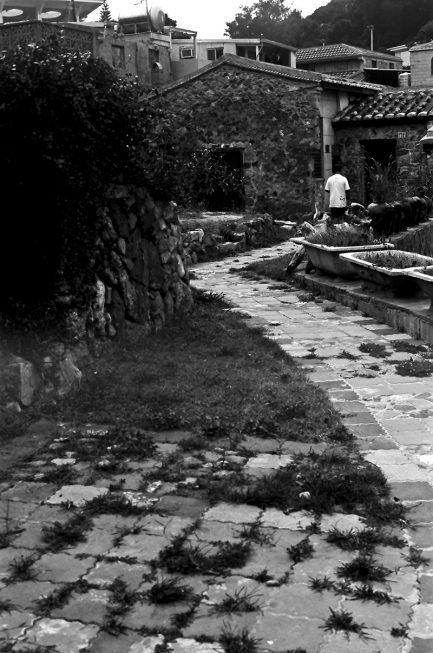 Bokkeh 柯達Kodak 5366黑白電影拷貝正片 iso6 超究極細緻! 電影底片