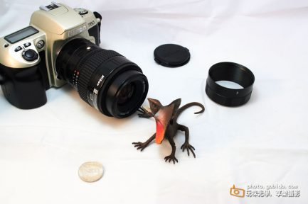Nikon 尼康 F-mount 近攝環 近攝接環 微距接環 接寫環 平價微距攝影 手動對焦 三段自由組合