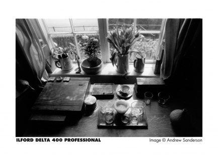 ILFORD DELTA DP 400 135底片 36枚 黑白底片 35mm