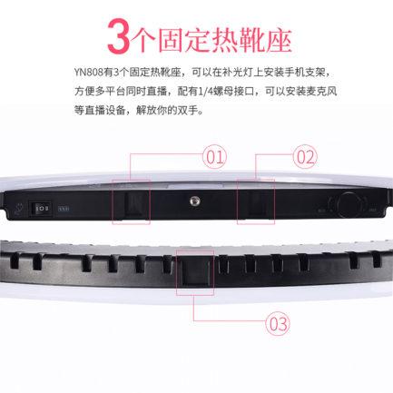 永諾 YN-808 21.7吋 環形LED持續燈 補光燈 美顏直播 眼神光利器 美光燈 美肌 直播神器 微電影 抖音 網紅